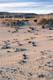 ARCTIC BEACH, HOLMAN