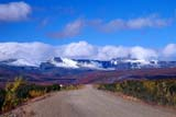SEA AUT SCE  NT  KJM0014410DROAD LEADING TO MOUNTAINS IN AUTUMNDEMPSTER HIGHWAY             09                   © KEVIN MORRIS                   ALL RIGHTS RESERVEDAUTUMN;CLOUDS;CORDILLERA;DEMPSTER_HIGHWAY;GRAVEL;HIGHWAYS;MOUNTAINS;NORTHWEST;NORTHWEST_TERRITORIES;NT_;NWT;ROADS;ROUTES;SCENES;SKY;TERRITORIESLONE PINE PHOTO              (306) 683-0889