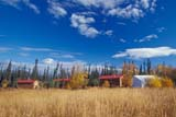 SEA AUT SCE  NT  KJM0015518DLOG CABINS IN LONG GRASS IN AUTUMNT'LOONDIH HEALING SOCIETYFORT MCPHERSON                 09                   © KEVIN MORRIS                   ALL RIGHTS RESERVEDABORIGINAL;ARCTIC;AUTUMN;CABINS;FIRST;FIRST_NATIONS;FORT_MCPHERSON;HOMES;LOG_HOUSES;NATIONS;NORTHWEST;NORTHWEST_TERRITORIES;NT_;NWT;SHELTERS;STRUCTURES;TERRITORIES;TLOONDIH_HEALING_SOCIETYLONE PINE PHOTO              (306) 683-0889