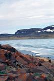 SEA SUM SCE  NT  KJM0007816D  VTROTTING SEA ICE AND HILLSHOLMAN                               06                  © KEVIN MORRIS                   ALL RIGHTS RESERVEDARCTIC;BEAUFORT_SEA;BREAKUP;HILLS;HOLMAN;ICE;NORTHWEST;NORTHWEST_TERRITORIES;NT_;NWT;ROCKS;SEA_ICE;SHORELINE;SUMMER;TERRITORIES;VICTORIA_ISLAND;VTL;WATERLONE PINE PHOTO              (306) 683-0889