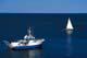 SAILBOAT AND FISHING BOAT, GRAND MANAN ISLAND