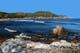 SHORELINE NEAR INGONISH, CAPE BRETON ISLAND