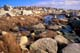 ROCKY SHORELINE, PEGGY'S COVE