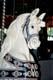CENTURY CAROUSEL HORSE, PORT DALHOUSIE