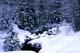 HUMMOCKS OF SNOW ON WINTER STREAM, MACTIER