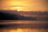 SEA SPR SCE  ON  BMM1000074DSUNRISE THROUGH MIST ON LAKEMUSKOKA                                ....© BEV MCMULLEN                   ALL RIGHTS RESERVEDCENTRAL;COTTAGE;ELEMENTS;LAKES;MIST;MUSKOKA;ON_;ONTARIO;SCENES;SKY;SPRING;SUN;SUNRISES;WATER;WEATHERLONE PINE PHOTO                  (306) 683-0889