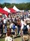CROWDS OF PEOPLE AT EDMONTON HERITAGE FESTIVAL, EDMONTON