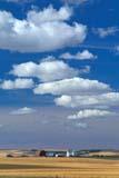 SEA AUT SCE  AB  KJM0311014D  VT  FARMYARD AND CLOUDSTHREE HILLS                       09/..© KEVIN MORRIS                ALL RIGHTS RESERVEDAB_;ALBERTA;AUTUMN;BULLETINS;CLOUDS;FARMING;FARMYARDS;PLAINS;PRAIRIES;RURAL;SCENES;SKY;THREE_HILLS;VTLLONE PINE PHOTO              (306) 683-0889