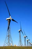 SEA SUM SCE  AB     2105921D  VTWIND TURBINESCOWLEY RIDGE WIND POWER INC.PINCHER CREEK                         07 . .© CLARENCE W. NORRIS            ALL RIGHTS RESERVEDAB_;ALBERTA;CORDILLERA;COWLEY_RIDGE_WIND_POWER_INC;ENERGY;FOOTHILLS;INDUSTRY;PINCHER_CREEK;STRUCTURES;SUMMER;TURBINES;VTL;WIND;WIND_FARMSLONE PINE PHOTO                  (306) 683-0889