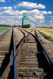 SEA AUT SCE  AB  CWN2207812D  VTAGRICORE ELEVATOR AND TRAIN TRACKSBAWLF                                09/..© CLARENCE W. NORRIS       ALL RIGHTS RESERVEDAB_;AGRICORE;ALBERTA;AUTUMN;BAWLF;BULLETINS;CLOUDS;ELEVATORS;FARMING;PLAINS;PRAIRIES;RAIL;RAILROADS;RURAL;SCENES;SKY;STRUCTURES;TRAINS;TRANSPORTATION;VTLLONE PINE PHOTO              (306) 683-0889