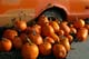 PUMPKINS AND RUSTY TRUCK, SARDIS