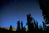 SEA AUT SCE  BC  IAW1907821DSTAR TRAILS, POLARIS, BIG DIPPERPURCELL MOUNTAINS             09© IAN A. WARD                    ALL RIGHTS RESERVEDALPINE;ASTRONOMY;AUTUMN;BC_;BIG_DIPPER;BRITISH;BRITISH_COLUMBIA;COLUMBIA;CORDILLERA;MOUNTAINS;NIGHT;NORTH;NORTH_STAR;POLARIS;PURCELL_MOUNTAINS;SCENES;SILHOUETTE;SKY;STAR;STAR_TRAILS;STARS;TREES;URSA_MAJORLONE PINE PHOTO              (306) 683-0889