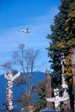 LOC VAN MIS  BC  KJM0016709D  VTFLOAT PLANE IN SKY OVER TOTEM POLES, STANLEY PARKVANCOUVER                        10/..© KEVIN MORRIS                 ALL RIGHTS RESERVEDABORIGINAL;AIRPLANES;BC_;BRITISH;BRITISH_COLUMBIA;BULLETINS;COLUMBIA;FIRST;FIRST_NATIONS;FLOAT_PLANES;NATIONS;PACIFIC;PARKS;SKY;STANLEY_PARK;SUMMER;TOTEM_POLES;TRANSPORTATION;VANCOUVER;VTL;WEST_COASTLONE PINE PHOTO              (306) 683-0889