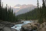 PAR NAT BAN  AB  WFS06D3528DXMISTAYA CANYONBANFF NATIONAL PARK         08/..© WILLIAM F. SMITH            ALL RIGHTS RESERVEDAB_;ALBERTA;ALPINE;BANFF_NP;CORDILLERA;MISTAYA_CANYON;MISTAYA_RIVER;MOUNTAINS;NP_;RAPIDS;RIVERS;SCENES;SUMMER;WATERLONE PINE PHOTO              (306) 683-0889