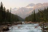 PAR NAT BAN  AB  WFS06D3537DXMISTAYA RIVERBANFF NATIONAL PARK         08/..© WILLIAM F. SMITH            ALL RIGHTS RESERVEDAB_;ALBERTA;ALPINE;BANFF_NP;CORDILLERA;MISTAYA_RIVER;MOUNTAINS;NP_;RAPIDS;RIVERS;SCENES;SUMMER;WATERLONE PINE PHOTO              (306) 683-0889