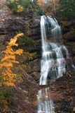 PAR NAT CAP  NS  CRS08A0497DX  VTBEULACH BAN FALLSCAPE BRETON HIGHLANDS NATIONAL PARK CAPE BRETON ISLAND          10© CLIFF SANDESON              ALL RIGHTS RESERVEDATLANTIC;AUTUMN;BEULACH_BAN_FALLS;BULLETINS;CAPE_BRETON_HIGHLANDS_NP;CAPE_BRETON_ISLAND;EAST_COAST;MARITIMES;NOVA;NOVA_SCOTIA;NP_;NS_;RURAL;SCENES;SCOTIA;VTL;WATER;WATERFALLSLONE PINE PHOTO              (306) 683-0889