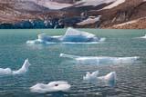 PAR NAT JAS  AB  KJM0307519D    ICE FLOES ON LAKE, ANGEL GLACIER,MT. EDITH CAVELLJASPER NAT. PK.                 08/..© KEVIN MORRIS                ALL RIGHTS RESERVEDAB_;ALBERTA;ALPINE;ANGEL_GLACIER;CORDILLERA;ELEMENTS;GLACIERS;ICE;ICE_FLOES;JASPER_NP;LAKES;MT_EDITH_CAVELL;NP_;SCENES;SUMMER;TURQUOISE;WATERLONE PINE PHOTO              (306) 683-0889