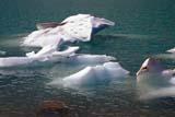 PAR NAT JAS  AB  KJM0307601D   ICE FLOES ON LAKE, MT. EDITH CAVELLJASPER NAT. PK.                 08/..© KEVIN MORRIS                ALL RIGHTS RESERVEDAB_;ALBERTA;ALPINE;CORDILLERA;ELEMENTS;ICE;ICE_FLOES;JASPER_NP;LAKES;MT_EDITH_CAVELL;NP_;SCENES;SUMMER;TURQUOISE;WATERLONE PINE PHOTO              (306) 683-0889
