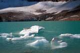 PAR NAT JAS  AB  KJM0307602D    ICE FLOES ON LAKE, ANGEL GLACIER, MT. EDITH CAVELLJASPER NAT. PK.                 08/..© KEVIN MORRIS                ALL RIGHTS RESERVEDAB_;ALBERTA;ALPINE;ANGEL_GLACIER;CORDILLERA;ELEMENTS;GLACIERS;ICE;ICE_FLOES;JASPER_NP;LAKES;MT_EDITH_CAVELL;NP_;SCENES;SUMMER;TURQUOISE;WATERLONE PINE PHOTO              (306) 683-0889
