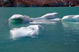 PAR NAT JAS  AB  KJM0307716D    ICE FLOES ON LAKE, MT. EDITH CAVELLJASPER NAT. PK.                 08/..© KEVIN MORRIS                ALL RIGHTS RESERVEDAB_;ALBERTA;ALPINE;ANGEL_GLACIER;CORDILLERA;ELEMENTS;ICE;ICE_FLOES;JASPER_NP;LAKES;MT_EDITH_CAVELL;NP_;SCENES;SUMMER;TURQUOISE;WATERLONE PINE PHOTO              (306) 683-0889