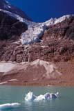 PAR NAT JAS  AB  KJM0307801D  VT   ICE FLOES ON LAKE, ANGEL GLACIER, MT. EDITH CAVELLJASPER NAT. PK.                 08/..© KEVIN MORRIS                ALL RIGHTS RESERVEDAB_;ALBERTA;ALPINE;ANGEL_GLACIER;BULLETINS;CORDILLERA;GLACIERS;ICE;ICE_FLOES;JASPER_NP;LAKES;MT_EDITH_CAVELL;NP_;SCENES;SUMMER;TURQUOISE;VTL;WATERLONE PINE PHOTO              (306) 683-0889
