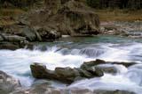 PAR NAT KOO  BC  PNB2000068DVERMILLION RIVER IN SUMMERKOOTENAY NAT PK.            07/..© PAUL BROWNE                ALL RIGHTS RESERVEDALPINE;BC_;BRITISH;BRITISH_COLUMBIA;COLUMBIA;CORDILLERA;KOOTENAY_NP;NP_;RIVERS;SCENES;SUMMER;VERMILLION_RIVER;WATER;WATERFALLSLONE PINE PHOTO              (306) 683-0889