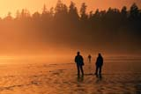 PAR NAT PAC  BC  DSR1000886DPEOPLE WALKING ON BEACHLONG BEACHPACIFIC RIM NAT. PARK        10/..© DUANE S. RADFORD      ALL RIGHTS RESERVEDACTIVITIES;BC_;BEACH;BRITISH;BRITISH_COLUMBIA;COLUMBIA;LONG_BEACH;NP_;OCEAN;OUTDOORS;PACIFIC;PACIFIC_RIM_NP;PEOPLE;SILHOUETTE;SUMMER;VANCOUVER_ISLAND;WALKING;WATER;WEST_COASTLONE PINE PHOTO              (306) 683-0889