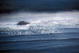 PAR NAT PAC  BC  DSR1000892DAERIAL VIEW SURF AND ISLANDLONG BEACHPACIFIC RIM NAT. PARK     10/..© DUANE S. RADFORD      ALL RIGHTS RESERVEDAERIAL;BC_;BRITISH;BRITISH_COLUMBIA;COLUMBIA;LONG_BEACH;NP_;OCEAN;PACIFIC;PACIFIC_RIM_NP;SHORELINE;SUMMER;TIDES;VANCOUVER_ISLAND;WATER;WAVES;WEST_COASTLONE PINE PHOTO              (306) 683-0889