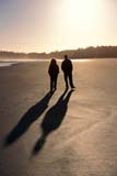PAR NAT PAC  BC  LJN2100606D  VTCOUPLE WALKING ON SHORELONG BEACHPACIFIC RIM NAT. PARK        07/..© LAURA NORRIS                ALL RIGHTS RESERVEDACTIVITIES;BC_;BEACH;BRITISH;BRITISH_COLUMBIA;COLUMBIA;COUPLE;LONG_BEACH;NP_;OUTDOORS;PACIFIC;PACIFIC_RIM_NP;PEOPLE;SAND;SHADOWS;SUMMER;VANCOUVER_ISLAND;VTL;WALKING;WEST_COASTLONE PINE PHOTO              (306) 683-0889