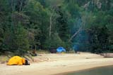 PAR NAT PUK  ON  JLB1600346DCAMPERS AT OISEAU BAYPUKASKWA NAT PK            09/..© JOHN L. BYKERK             ALL RIGHTS RESERVEDACTIVITIES;BEACH;CAMPING;CENTRAL;GREAT_LAKES;NP_;OISEAU_BAY;ON_;ONTARIO;OUTDOORS;PEOPLE;PUKASKWA_NP;SHELTERS;SUMMER;TENTSLONE PINE PHOTO              (306) 683-0889