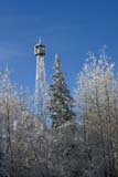 PAR NAT RID  MB     1312609D  VTFIRE TOWER, BLUE SKY AND SNOW-COVERED TREESRIDING MOUNTAIN NAT. PK   12/30© CLARENCE W. NORRIS      ALL RIGHTS RESERVEDBULLETINS;ELEMENTS;FIRE;FOREST;FROST;LOOKOUT_TOWERS;MANITOBA;MB_;NP_;PLAINS;PLATEAU;PRAIRIES;RIDING_MOUNTAIN_NP;STRUCTURES;TREES;VTL;WINTERLONE PINE PHOTO              (306) 683-0889