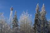 PAR NAT RID  MB  1312610ADFROSTY FIRE TOWER, BLUE SKY, AND SNOW-COVERED TREESRIDING MOUNTAIN NAT. PK                   12/30© CLARENCE W. NORRIS      ALL RIGHTS RESERVED ELEMENTS;FIRE;FOREST;FROST;LOOKOUT_TOWERS;MANITOBA;MB_;NP_;PLAINS;PLATEAU;PRAIRIES;RIDING_MOUNTAIN_NP;STRUCTURES;TREES;WINTERLONE PINE PHOTO              (306) 683-0889