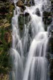 PAR NAT YOH  BC  REH1000821D  VTCASCADING WATERFALLYOHO NATIONAL PK            08/..© ROYCE HOPKINS              ALL RIGHTS RESERVEDALPINE;BC_;BRITISH;BRITISH_COLUMBIA;BULLETINS;COLUMBIA;CORDILLERA;MOUNTAINS;NP_;SUMMER;VTL;WATER;WATERFALLS;YOHO_NPLONE PINE PHOTO              (306) 683-0889