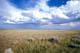 GRASSLANDS AND SUMMER SKY, GRASSLANDS NATIONAL PARK