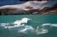 ICE FLOES ON LAKE, ANGEL GLACIER, MT. EDITH CAVELL, JASPER NATIONAL PARK
