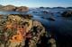 STARFISH ON ROCKS AND OCEAN, SCHOONER'S COVE, PACIFIC RIM NATIONAL PARK