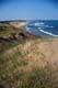 GRASS AND OCEAN SHORELINE, P.E.I. NATIONAL PARK