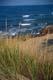GRASS AND OCEAN SHORELINE, P.E.I. NATIONAL PARK, PRINCE EDWARD ISLAND