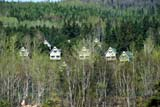 SEA SPR SCE  PQ  MTT1000051DCOTTAGE HIDEAWAY IN SPRING TREESMATANE                              05/..© MIKE TOBIN                     ALL RIGHTS RESERVEDBUILDINGS;COTTAGE;FOREST;HOMES;MATANE;QC_;QUEBEC;SCENES;SPRING;STRUCTURES;TREESLONE PINE PHOTO              (306) 683-0889