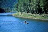 SEA SUM SCE  QC  CRS0000289D  SALMON FISHINGGASPE PENINSULAMETAPEDIA RIVER               08/..© CLIFF SANDESON            ALL RIGHTS RESERVEDCENTRAL;FISHING;GASPE;GASPE_PENINSULA;OUTDOORS;PEOPLE;QC_;QUEBEC;RIVERS;SCENES;SUMMER LONE PINE PHOTO              (306) 683-0889