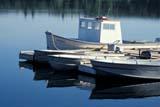 LOC ANG LAK  SK     1904404DBOATS AT DOCK IN EARLY MORNINGANGLIN LAKE                       06/..© CLARENCE W. NORRIS      ALL RIGHTS RESERVEDANGLIN_LAKE;BOATS;DOCKS;LAKES;PARKLAND;PLAINS;PRAIRIES;SASKATCHEWAN;SK_;SUMMER;WATER LONE PINE PHOTO              (306) 683-0889