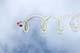 SKY HAWKS JUMPING TEAM, SASKATOON