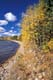 AUTUMN SHORELINE, BIRCH BAY, WASKESIU LAKE, PRINCE ALBERT NATIONAL PARK