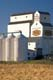 SASK WHEAT POOL ELEVATOR AND RIPE WHEAT, SASKATOON