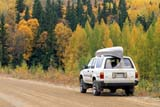 SEA AUT SCE  SK     1104508DTOYOTA 4-RUNNER, CANOE ON AUTUMN ROADPRINCE ALBERT NAT. PK       09..© CLARENCE W. NORRIS      ALL RIGHTS RESERVEDACTIVITIES;AUTOS;AUTUMN;BOREAL;CAMPING;CANOEING;CANOES;EVERGREENS;FOREST;MIXED_FOREST;NP_;OUTDOORS;PARKLAND;PRINCE_ALBERT_NP;ROADS;SASKATCHEWAN;SCENES;SK_;SUV;TAMARACKS;TOYOTA;TREES;TRANSPORTATIONLONE PINE PHOTO              (306) 683-0889