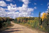 SEA AUT SCE  SK     1708825DGRAVEL ROAD THROUGH MIXED FOREST IN AUTUMNPRINCE ALBERT NAT. PK       09..© CLARENCE W. NORRIS      ALL RIGHTS RESERVEDAUTUMN;BOREAL;CLOUDS;FOREST;GRAVEL;MIXED_FOREST;NP_;PARKLAND;PRINCE_ALBERT_NP;ROADS;RURAL;SASKATCHEWAN;SCENES;SK_;SKY;TREESLONE PINE PHOTO              (306) 683-0889