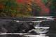 FALL COLOURS ON THE MERSEY RIVER, MILL FALLS, KEJIMKUJIK NATIONAL PARK