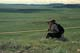 MAN VIEWING FRENCHMAN RIVER VALLEY, GRASSLANDS NATIONAL PARK