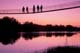 PEOPLE ON SUSPENSION BRIDGE, BEAVER RIVER AT TWILIGHT, RAPID VIEW