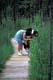 COUPLE ON BOARDWALK, BOUNDARY BOG, PRINCE ALBERT NATIONAL PARK
